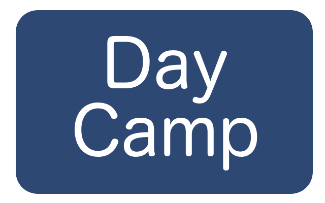 day camp button